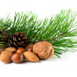 Christmas decoration with mixed nuts, pine twig and pine cones — Foto de Stock