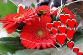 Gerbera with hearts — Stock Photo