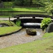 Bridge in Japanese Garden — Stock Photo #25685533