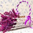 Purple lavender and white basket - Stock Photo