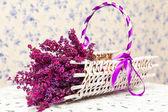 紫色的薰衣草和白篮 — 图库照片