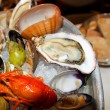 Seafood, oyster and mollusk — Stock Photo