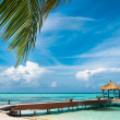 Maldivian house on a tropical island, travel background — Stock Photo