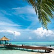 Maldivihouse on tropical island, travel background — Stock Photo #30456561
