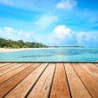 Stock Photo: Jetty, beach and jungle - vacation background
