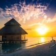 Sunset on Maldives island — Stock Photo #51197383