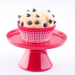 Muffin — Stock Photo #22452013
