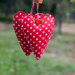 Hanging cloth heart — Stock Photo #31416711