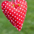 Hanging cloth heart — Stock Photo