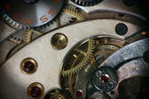 Pocket Watch inside — Stock Photo
