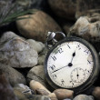 Pocket Watch — Stock Photo #23758827