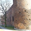 Medieval Teutonic castle in Swiecie — Stock Photo #22438145