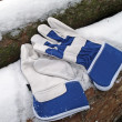 Stock Photo: Protective gloves