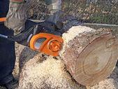 Sawing timber — Stock Photo