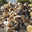Cut wood — Stock Photo