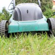 Lawnmower — Foto de stock #26139359