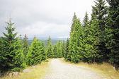 Landscape of mountains karkonosze Poland — Stock Photo