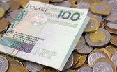 польский злотый pln валюта - банкнот и монет — Стоковое фото