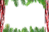 Christmas green framework isolated — Stock Photo