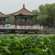 Lotus pond and the traditional hexiang — Stock Photo