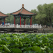 Stock Photo: Lotus pond and traditional hexiang