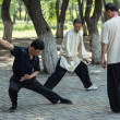 Stock Photo: Morning exercises - tai chi chuan