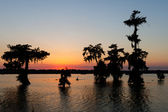 Kayaking at Sunset, Lake Martin, Breaux Bridge, Louisiana — Stock Photo