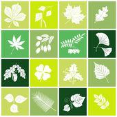 Leaves set — Stock Vector
