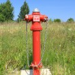 Fire hydrant in overgrown grass  — Stock Photo