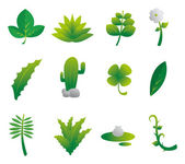Plants Nature Set — Stock Vector