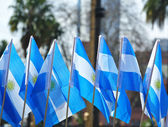 Patriotism argentinean flags — Stock Photo