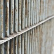 Rusty prison bars — Stock Photo