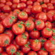 Постер, плакат: Ripe Red Tomatoes