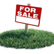 Stock Photo: Land For Sale