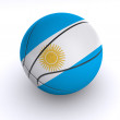 Argentinian Basket Ball on White — 图库照片