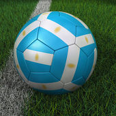 Soccer Ball with Argentinian Flag — Stock Photo