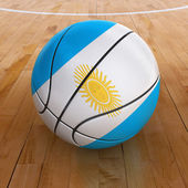 Basket Ball with Argentinian Flag — Stock Photo
