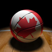 Canadian Basket Ball with Dramatic Light — Stock Photo