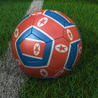 Stock Photo: Soccer Ball with North Korean Flag