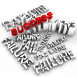 No Success Without Failure - Stock Photo
