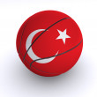 Turkish Basket Ball on White — Foto Stock