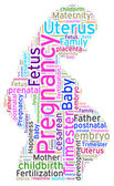 Word cloud of Pregnancy — Stock Photo