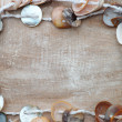 Shell Necklace Jewelry with copy space — Stok fotoğraf