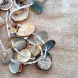 Necklace made of small seashells — Stock Photo #26284153