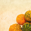 Autumnal pumpkins, harvest — Stockfoto #27755531