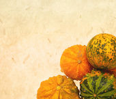 Autumnal pumpkins, harvest — Photo