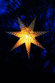 Vakantie sterren — Stockfoto