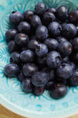 Blueberries in blue bowl — Stock Photo