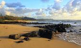 Kauai Beach Morning — Stock Photo