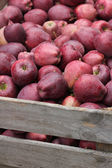 Red apples bulk — Stock Photo